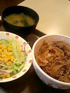 すき家の牛丼(並)サラダセット