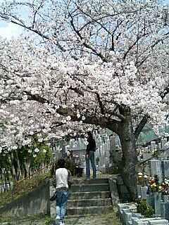 高槻公園墓地