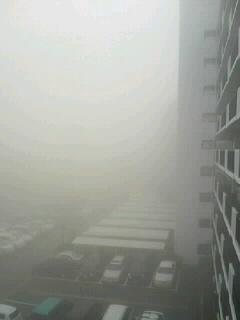 濃霧だぁ!