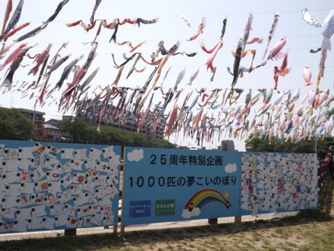 01dscf1505