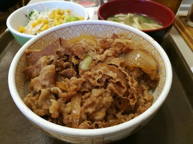 すき家 新大阪宮原店の牛丼